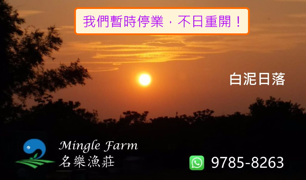 MINGLE FARM